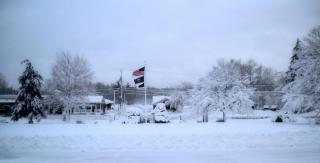 Town Hall snow